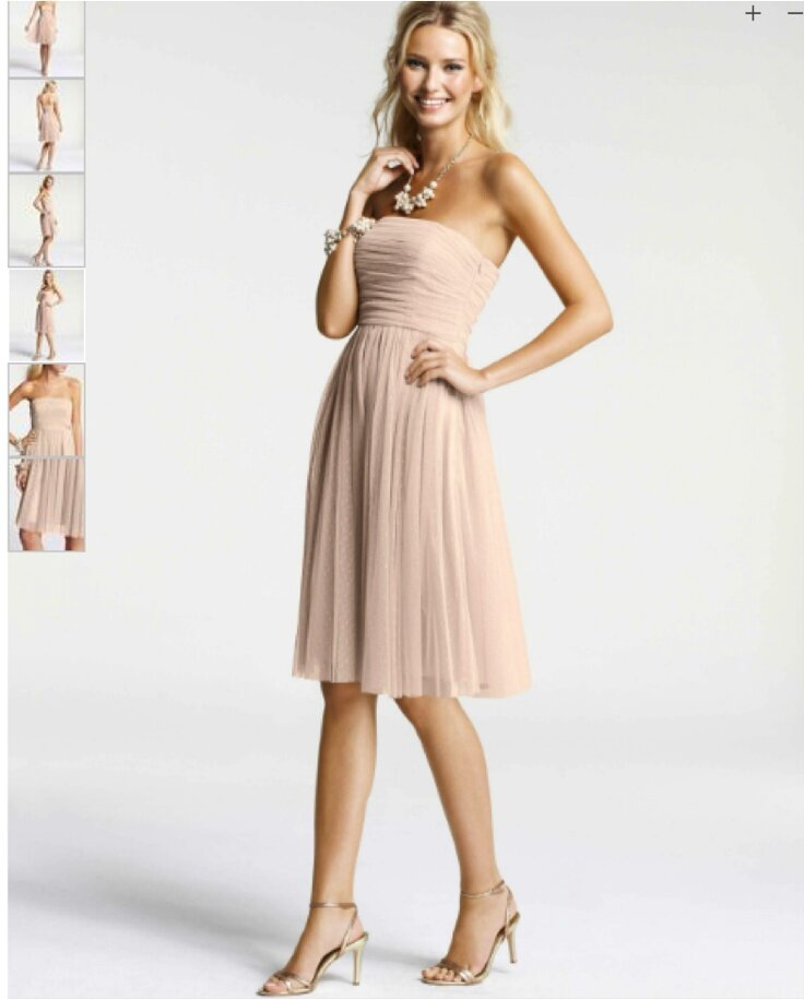 Ann Taylor wedding bridesmaid dresses Photo - 1