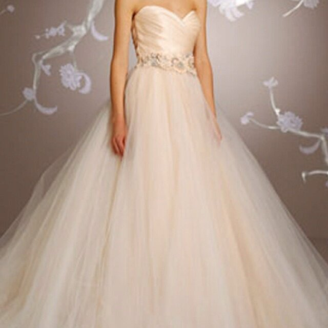 Lazaro Sherbet wedding dresses: Pictures ideas, Guide to buying ...