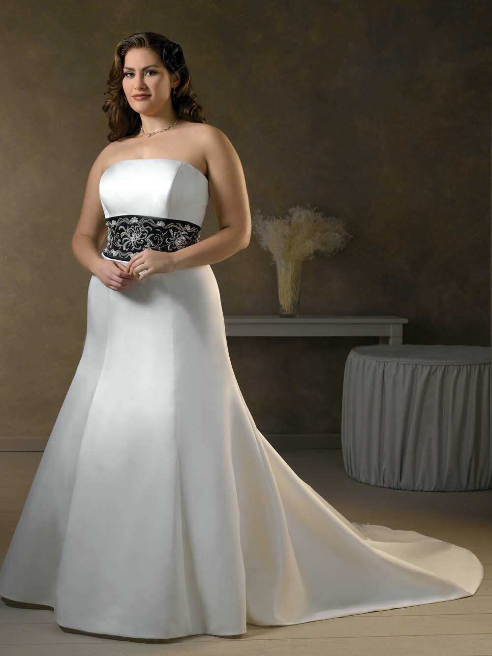 Petite plus size wedding dress dress ideas for Wedding dresses petite sizes