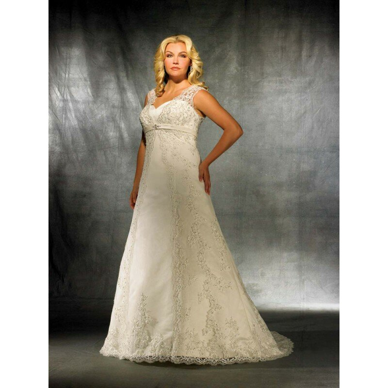 Plus size retro wedding dresses Photo - 9