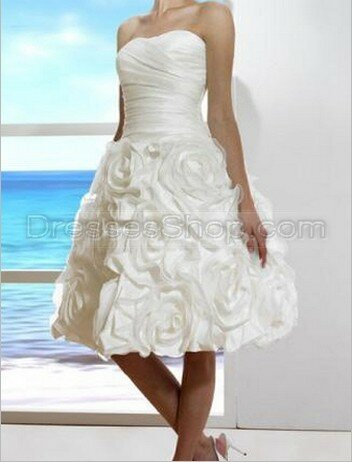 Wedding dresses for small weddings Photo - 2