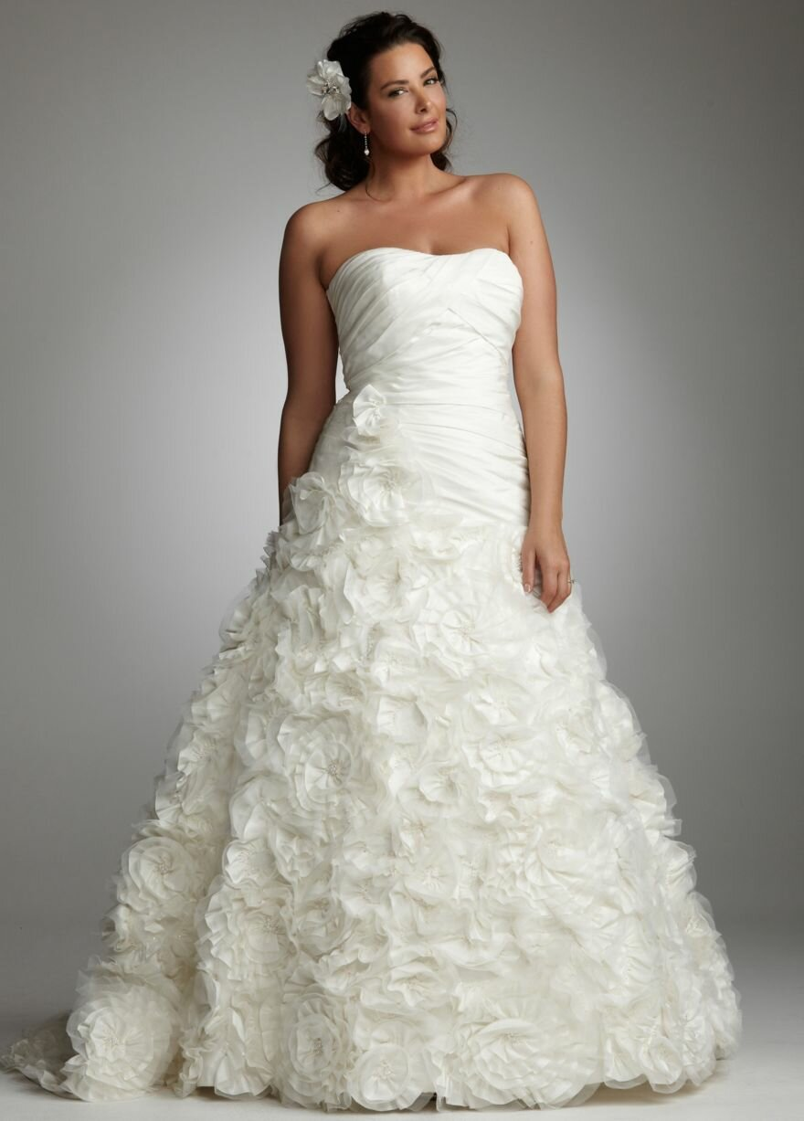 plus size wedding dresses photo - 2