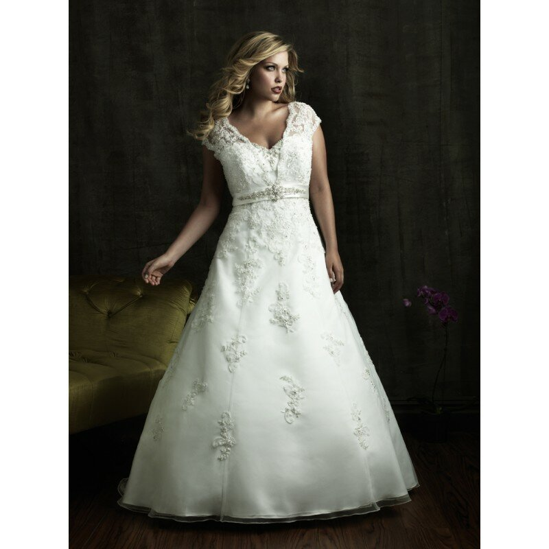 plus size wedding dresses with sleeves photo - 2